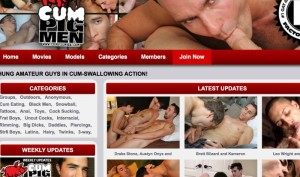 Great adult paid site with gay material