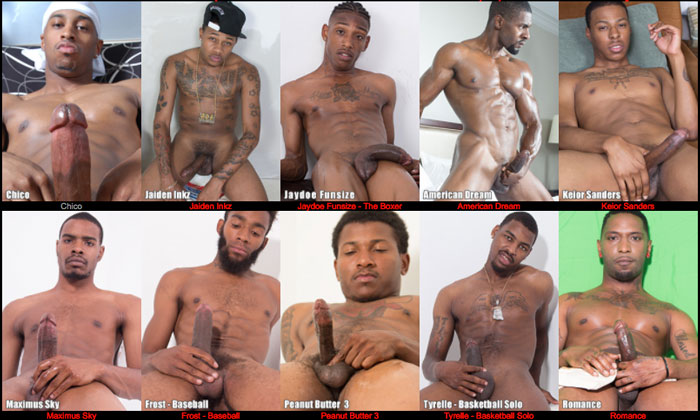 best paid website to have fun with awesome gay HD videos